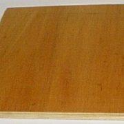eucalyptus-plywood